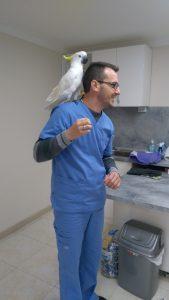 ветеринарен лекар, ветеринарен хирург, ветеринарен офталмолог, ветеринарен дерматолог,